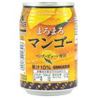 11289 mango juice