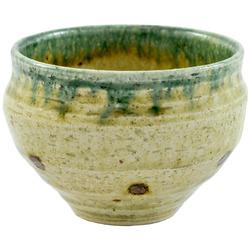 11611 ceramic teacup green black dots