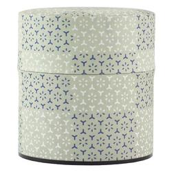 11947 tea canister light green