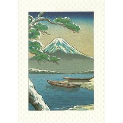 12587 mount fuji winter greeting card