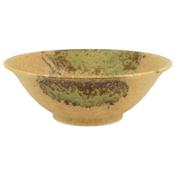 11588 ceramic noodle bowl small front