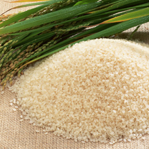Rice selection inspirationpage 216x216
