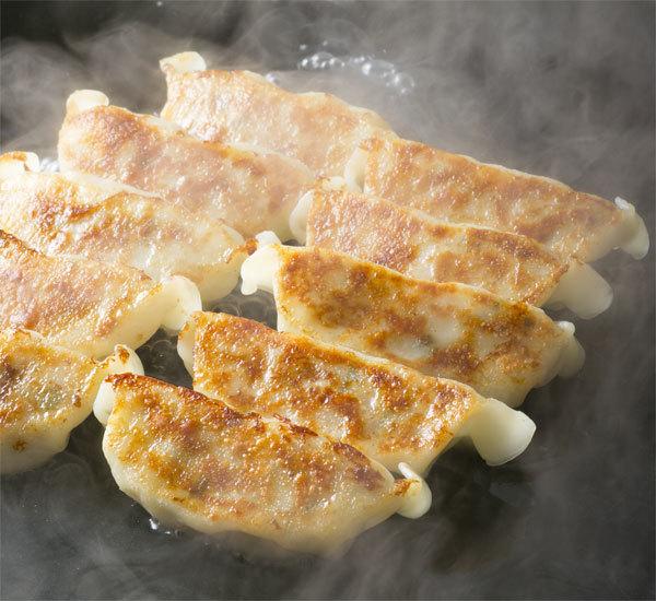 Vegetarian Tofu Gyoza